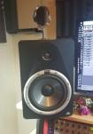 BX8 monitors